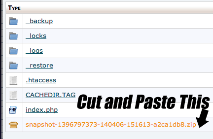 Snapshots cPanel File