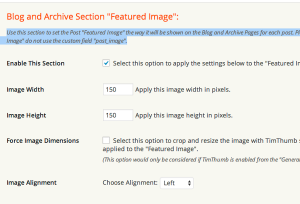 Udesign featured images settings