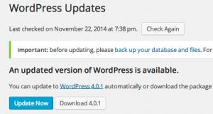 Before auto update WordPress update