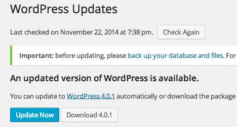Before auto update WordPress update