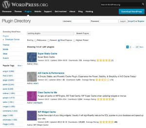 Caching WordPress Plugins