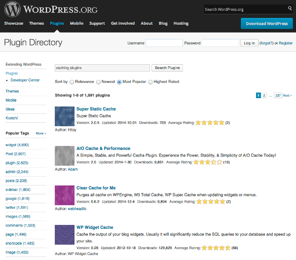 Caching WordPress Plugins