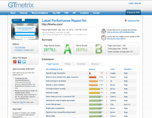 GtMetrix.com Screenshot
