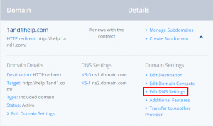DNS and 1and1
