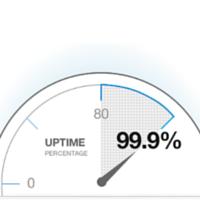 Website Status Monitoring