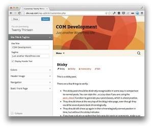 Wordpress Theme Customizer